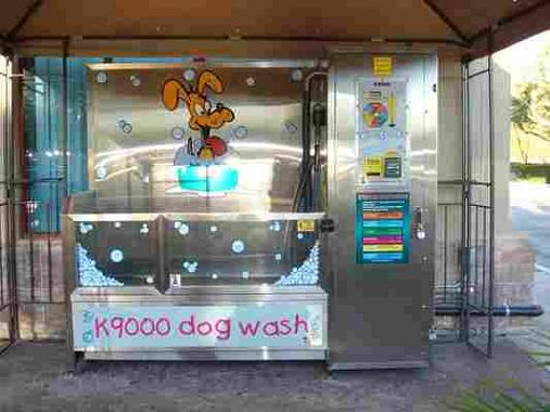 61995-DogWash1.jpg
