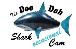 59884-DooDahSharkCam-thumb-300x194-59883.jpg