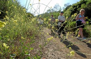 Docents lead hike in the Puente Hills Habitat. File photo