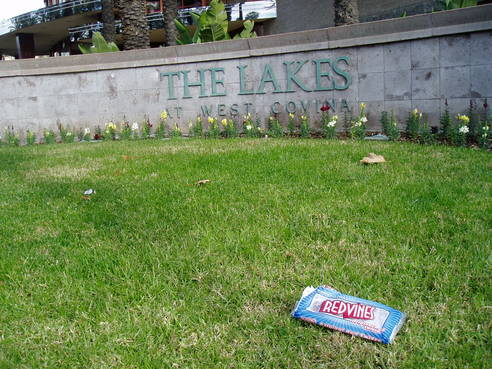 49056-The Lakes in demise Jan 2011 023.jpg