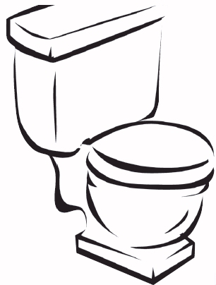 12612-low-flow-toilet.jpg