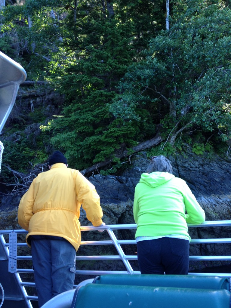Passenger gather at railing to peer at granite cliffs sliding by in Misty Fjords National Monument. (Photos by Richard Irwin)